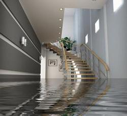 1316551358_254450912_4-Residential-and-commercial-Flood-Water-Damage-services-free-est-8888110187-Services
