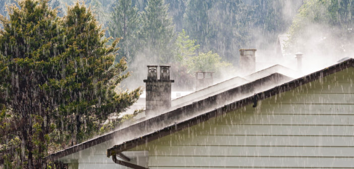 Tips for Checking for Mold Following a Wet Winter