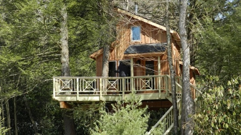 treehouse masters tree houses. Living In Trees Is No Longer Just For The Birds Thanks To Treehouse Masters Tree Houses