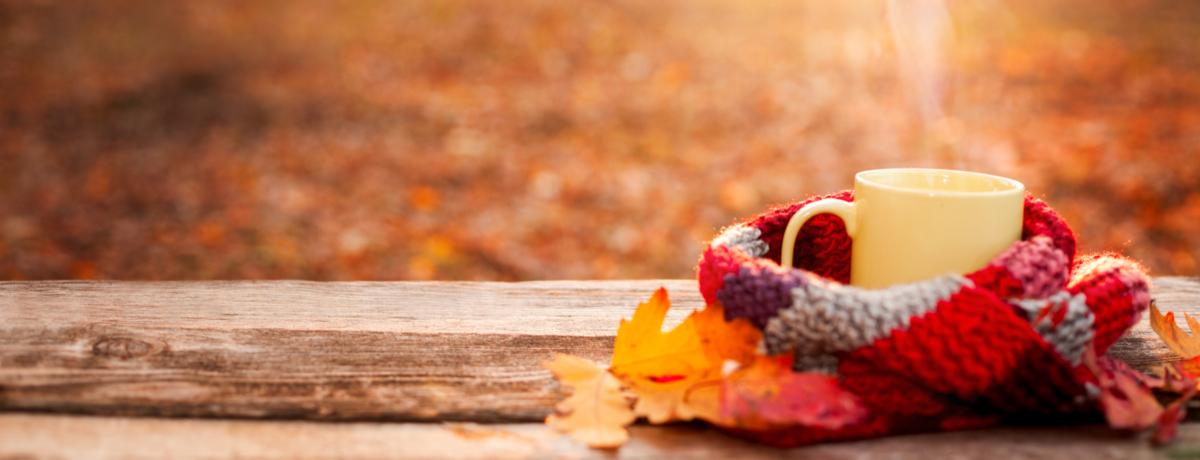 秋季能源效率提示和耐久性清单